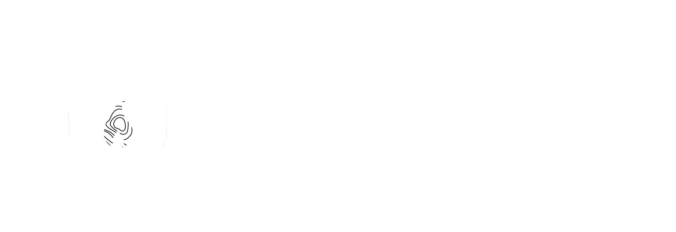 De Micheli Marco & Co.